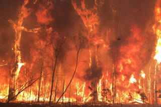 CCANSW warns cemetery operators of catastrophic fire dangers in NSW